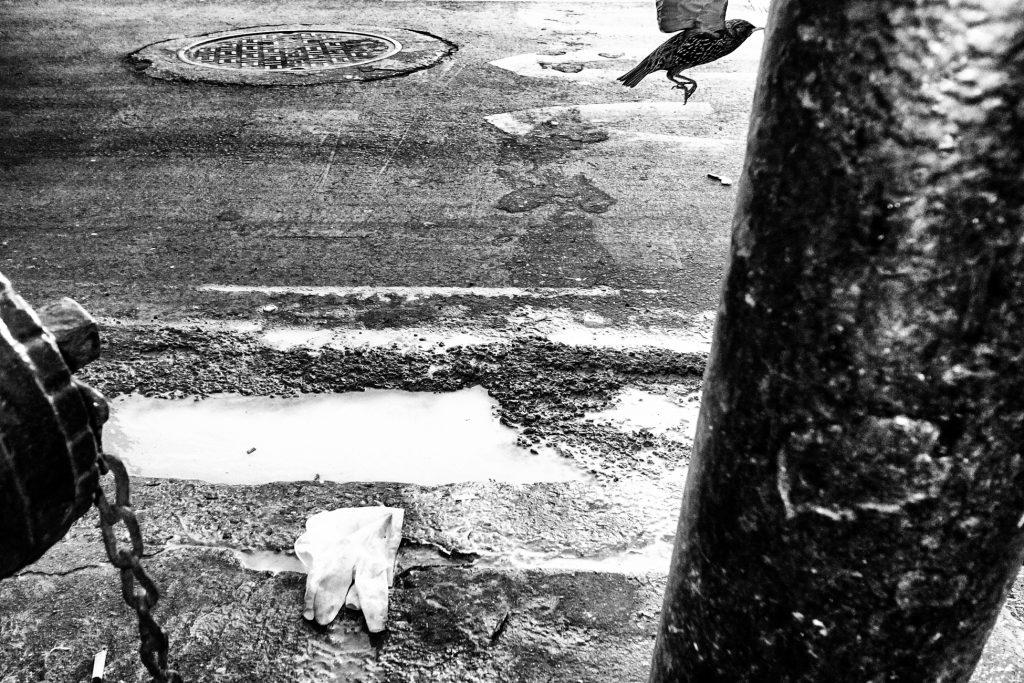 Michael_Ernest_Sweet_Street_Photography.M